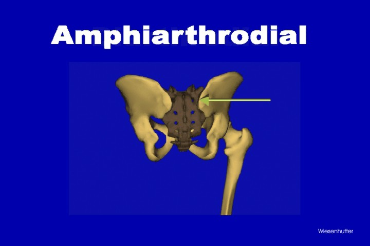 about arthritis